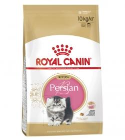 сфинкс Royal Canin